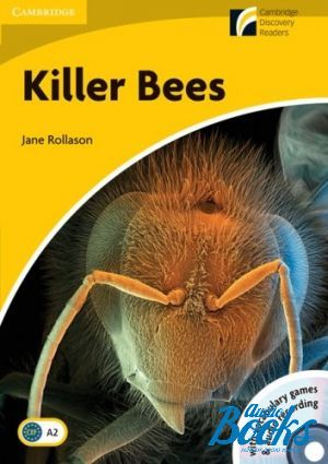 "Book + 2 cd ""CDR 2 Killer Bees Book with CD-ROM and Audio CD Pack"" - Jane Rollason"